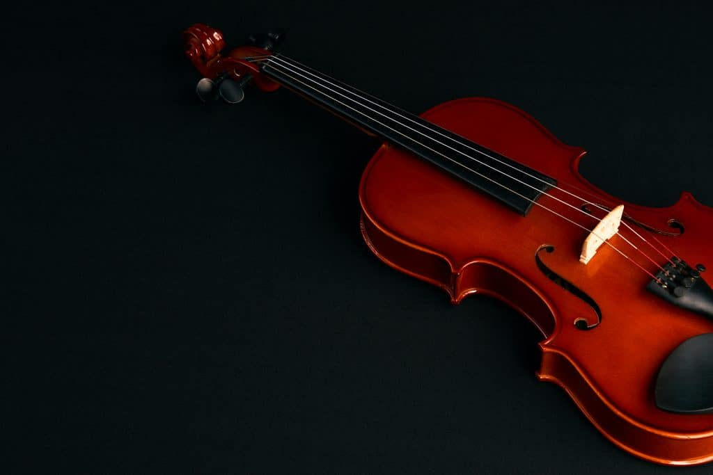 professional violin lessons in St Paul, MN